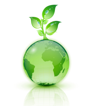 What to look forward in 2015 for the Green Environment?